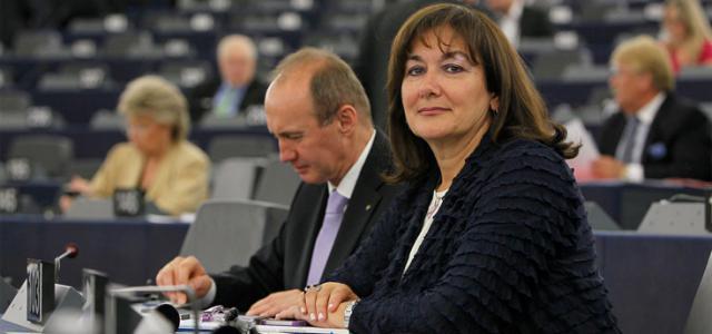 Moramo uložiti napore na razini EU - kako bismo osigurali što brže saniranje štete nastale u požarima!